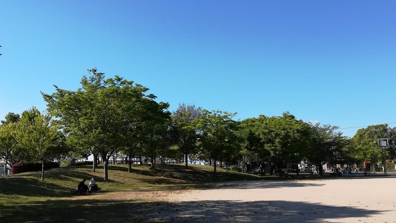 青い空と緑の木々
